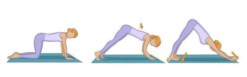 exercide yoga dos